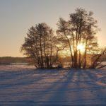 冬のスウェーデンの風景