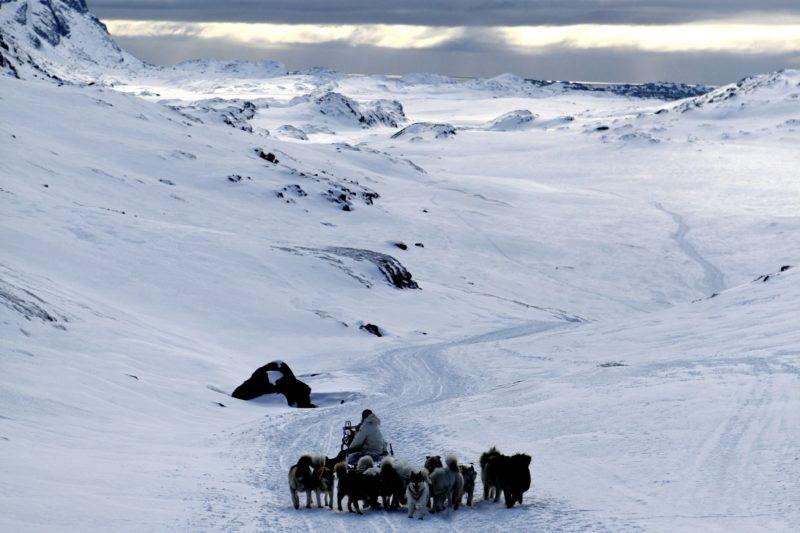 グリーンランドの犬ぞり