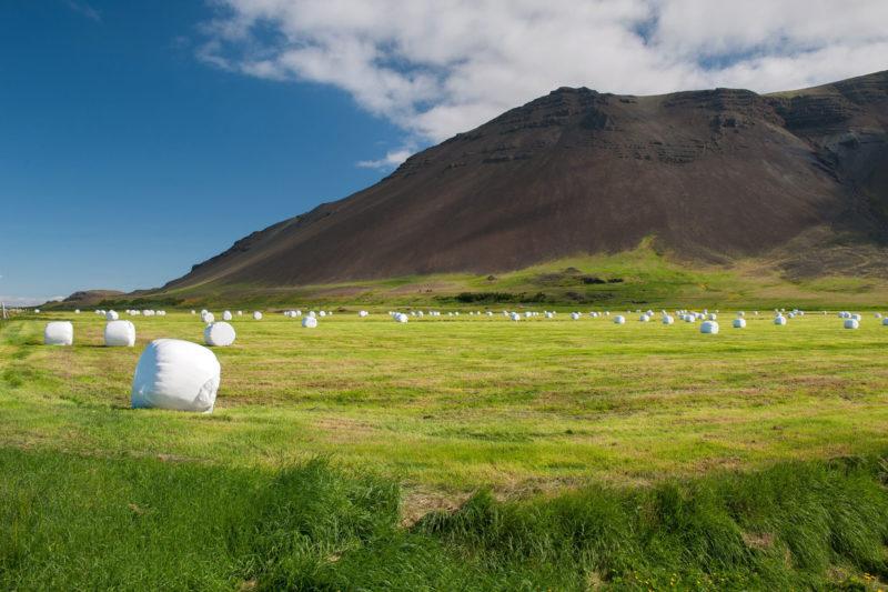 アイスランド レイキャネス半島