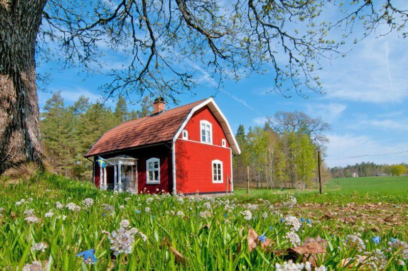 花と赤い小屋のある風景